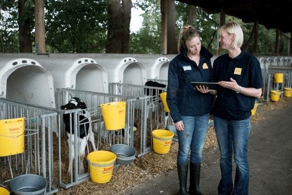 Vitaltrunk: Specjalistyczne pójło dla cieląt i krów mlecznych