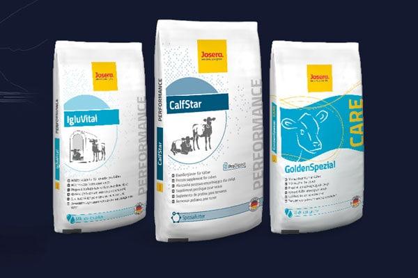 CalfStar: Nowoczesny model żywienia cieląt
